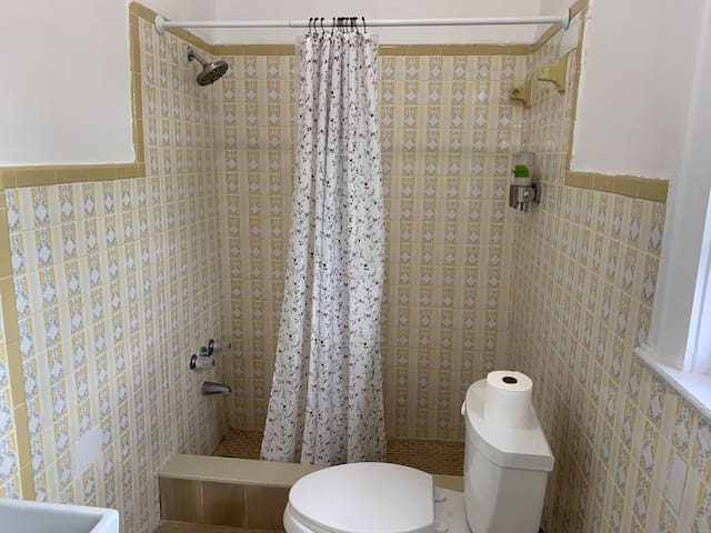 Clean bathroom with soap and shampoo