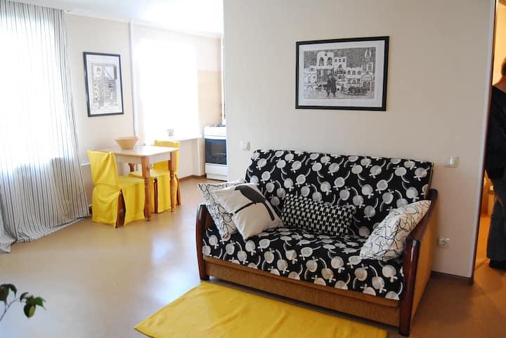Art Apartment on Knyahyni Ol'hy Street