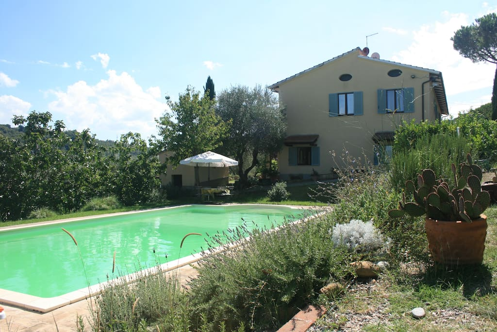 La Piscine et la maison protégée par une belle densité végétale.