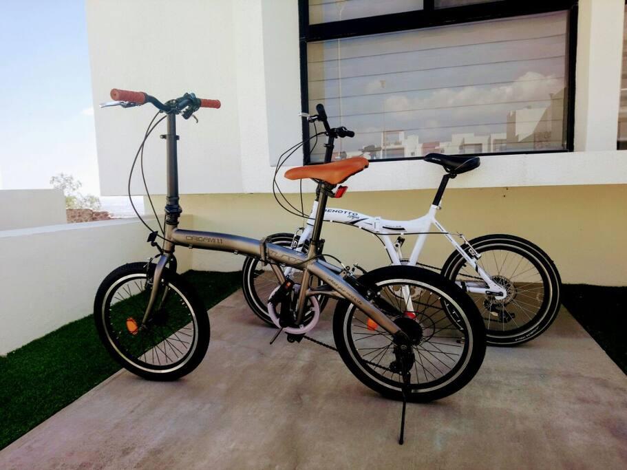 Préstamo de Bicicletas plegables adulto