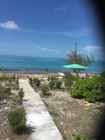 Reefside Splendour