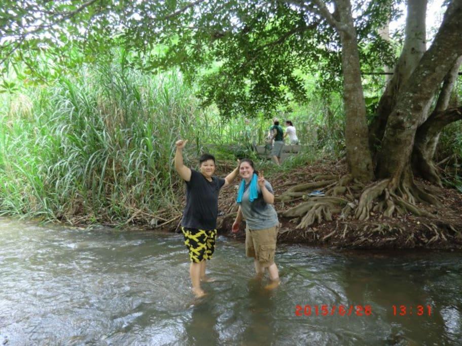 Stream nature bath