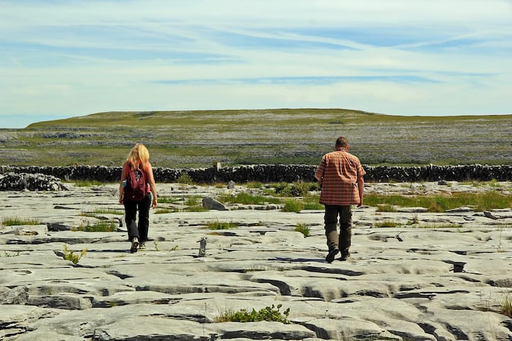 Limestone Karst Pavement