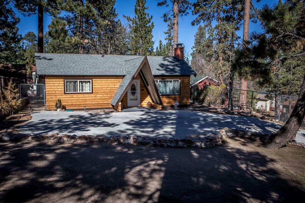 Building,Cottage,Fir,Tree,Hut