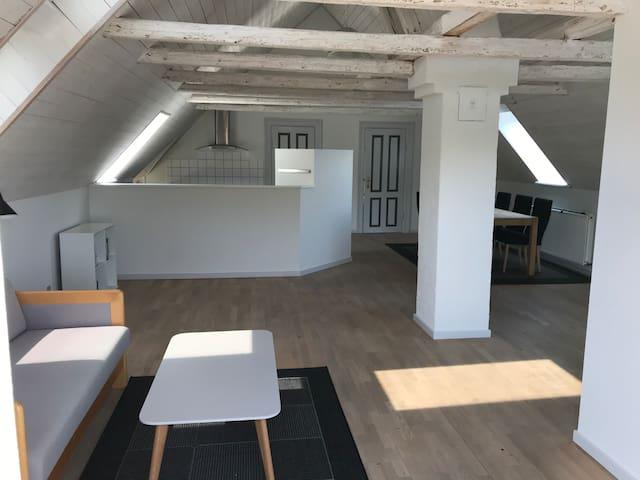 Stor lejlighed i Odense V, 10 km fra Odense C