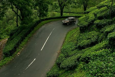 Munnar Trip including 2 night stay (4 guests)