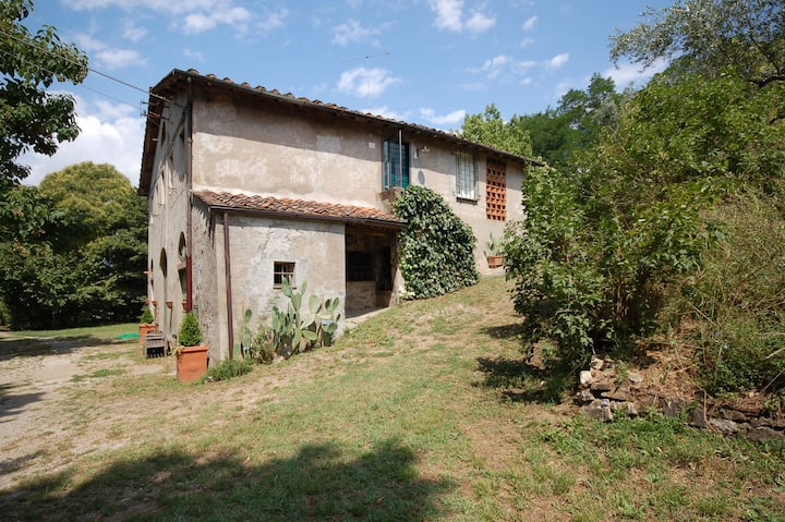 House on the countryside close to the city of Lucca, fenced with private swimming pool