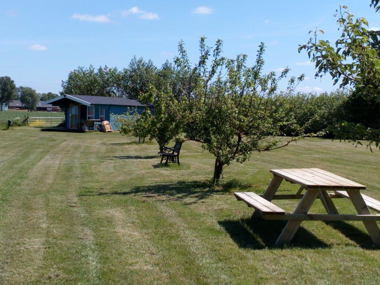 Lekker picknicken op het open terrein , op de nieuwe picknick bank.