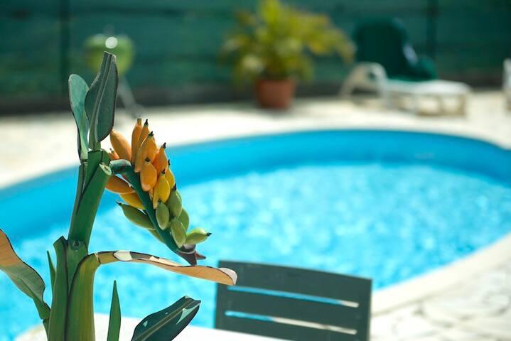 Villa de luxe avec piscine privée - Saint-Francois - Villa