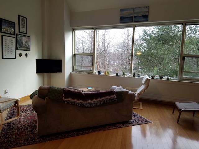 Spacious Charles River Studio w/ views of river