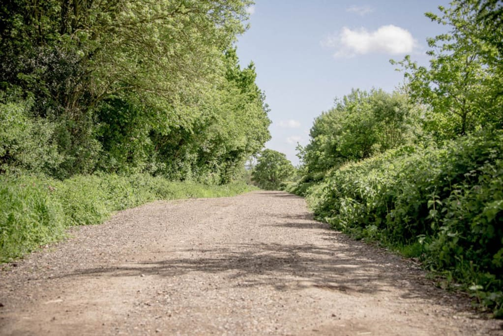The track to the yurt
