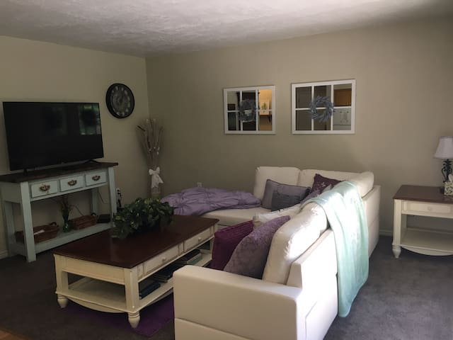 Comfortable and Cozy Private Large 1 Bedroom Condo