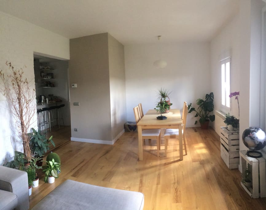 Salón-comedor Living room- dining room