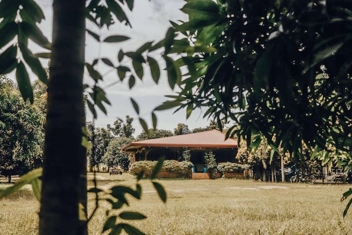 Relaxing Farm Stay away from the Busy City Life