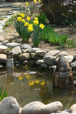 사랑채 앞에 있는 작은 연못. 물고기도 살아요.