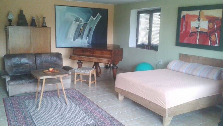 Charming flat with Amazing Garden - Zlín