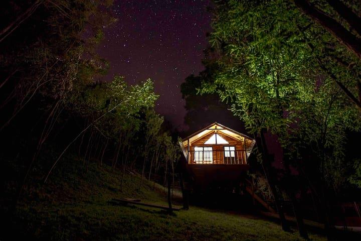 Transylvania Loft  Treehouse
