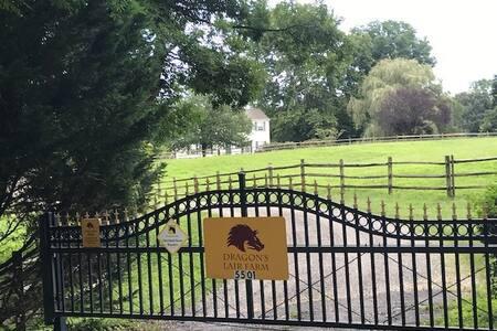 Dragon's Lair Farm, a horse farm