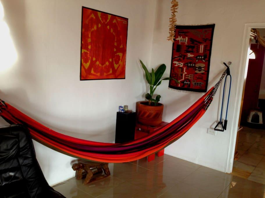 hammock in livingroom