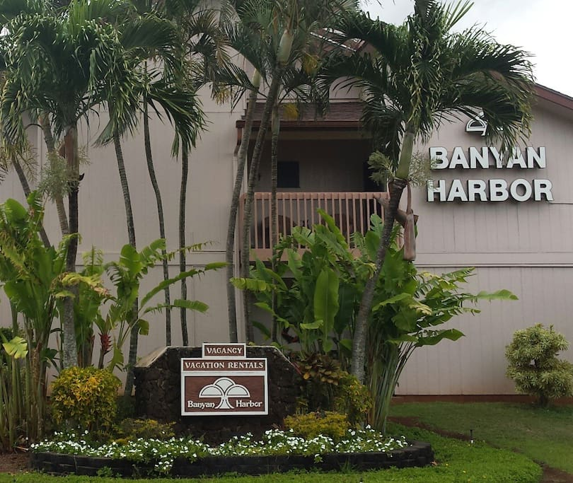 Banyan Bay Apartments: Serviced Apartments For Rent In Lihue