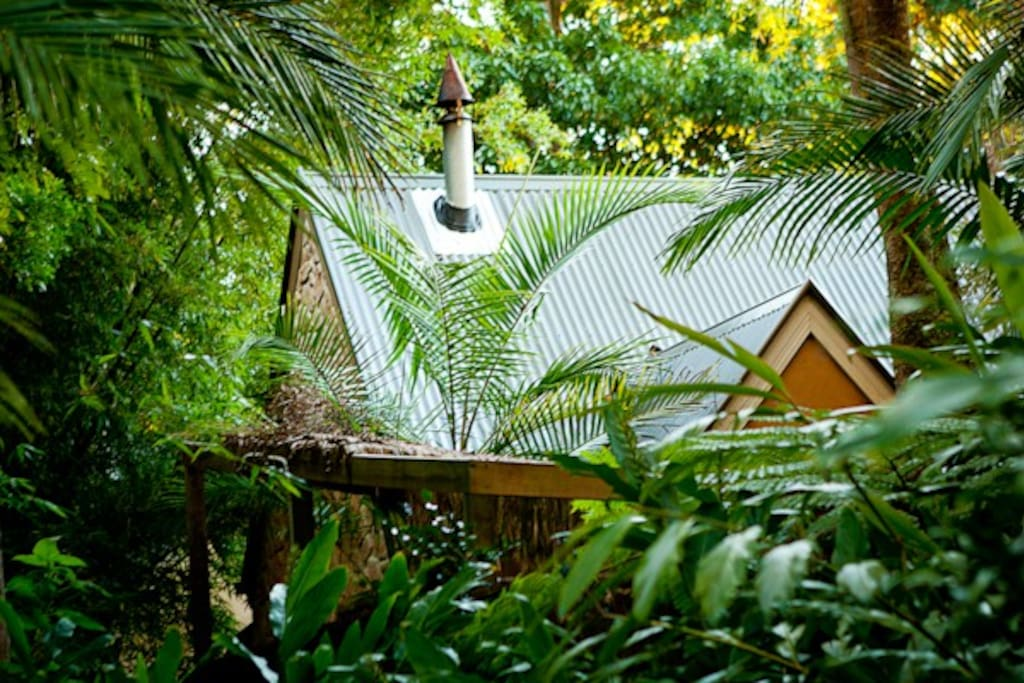 Private Cottage in a lush green rainforest setting