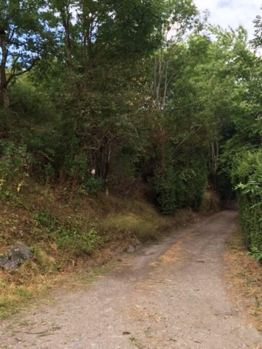 sentier passant devant la maison