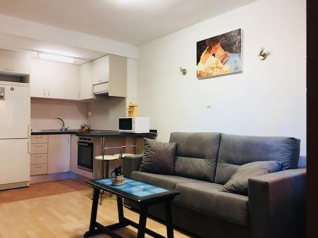 Apartamento 1 habitación + sofa cama
