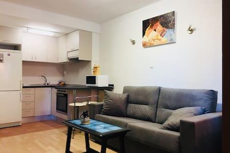 Apartamento Plaza Palacio Congresos