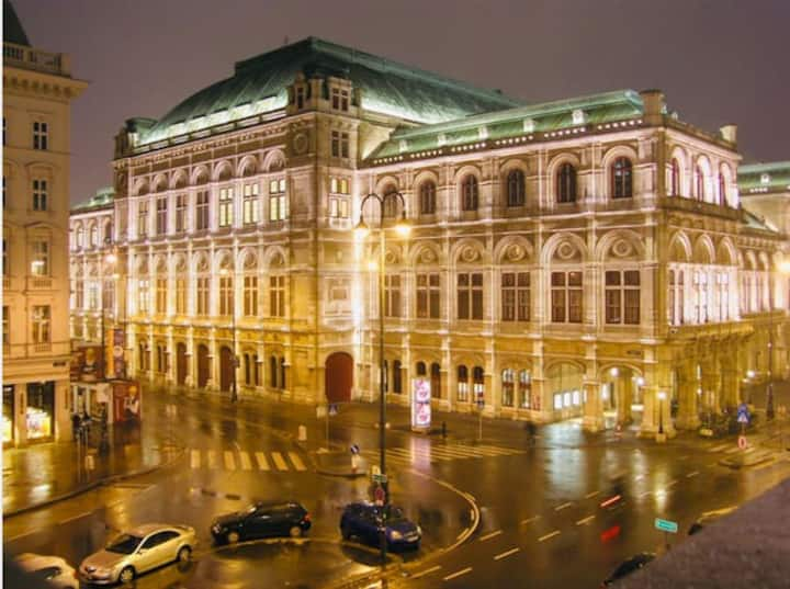 AMAZING APARTMENT IN VIENNA, OPERA, CATHEDRAL