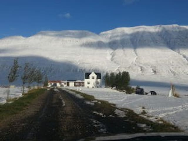 Guesthouse Uppsalir and riding tours(Room for 2-3)