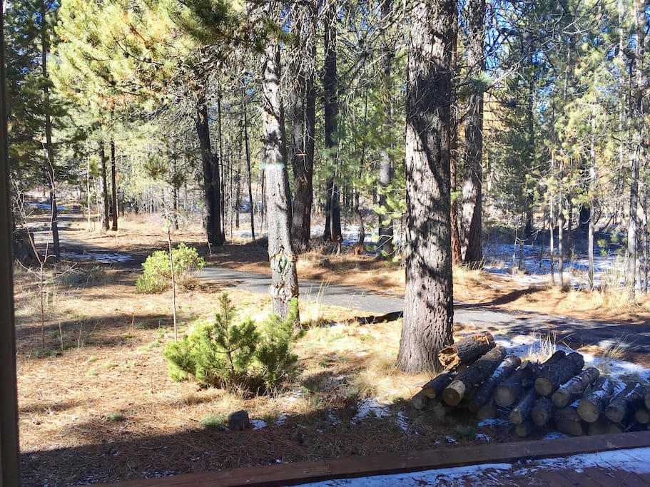View from living room (walking path and Deschutes National Forest)