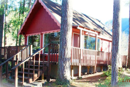 NEW LISTING!! *Little Red Cabin* 5 minutes to Mt. Rainier Entrance!