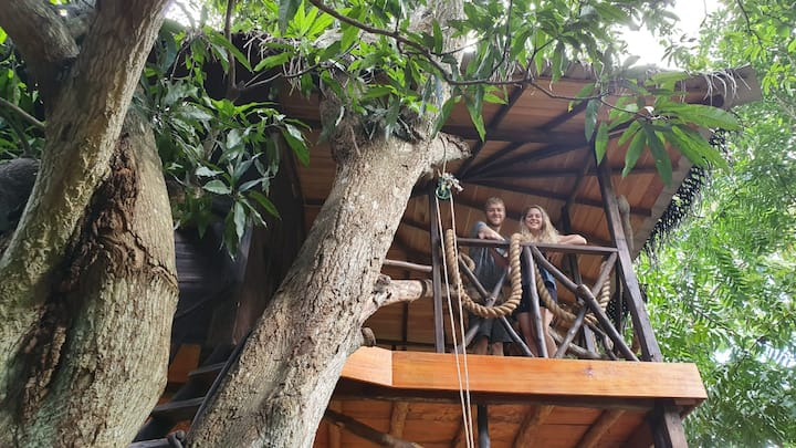 Eco Friendly Tree House  (in Green park safari )