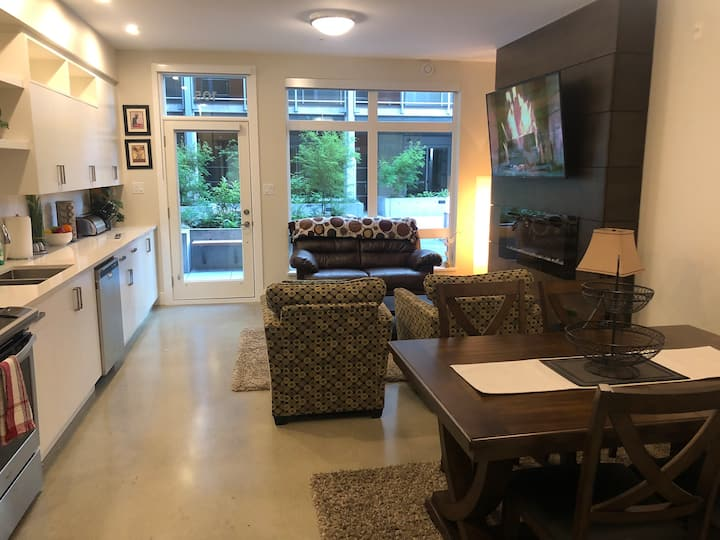 Brand New two bedroom modern Condo in Downtown