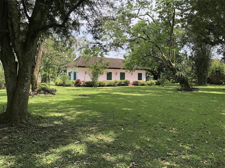 Conjunto privado de Casas junto al Río Filobobos