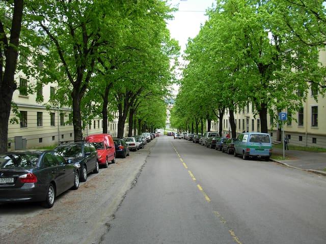 Klassisk leilighet, St. Hanshaugen