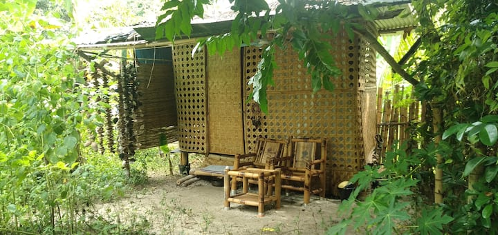 living bamboo house