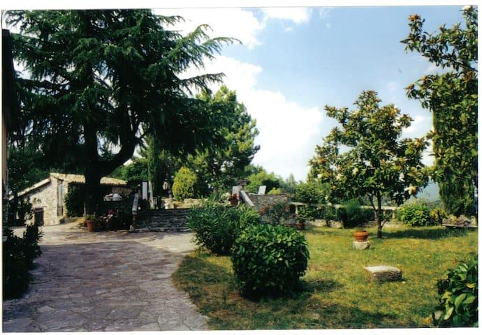 ampia casa su due piani - Torricella - House