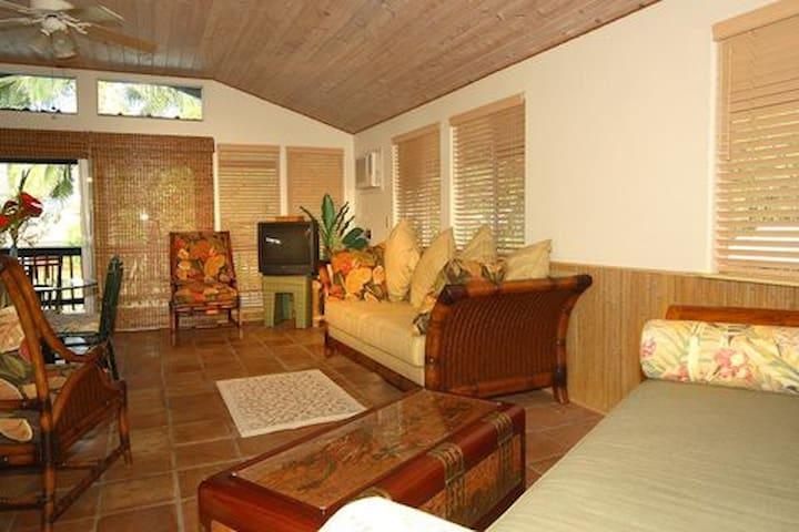 Bamboo Beach Cottage - Puako - Casa