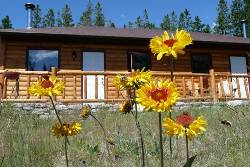 Our cottage houses two self-contained units for guests wishing to do their own cooking