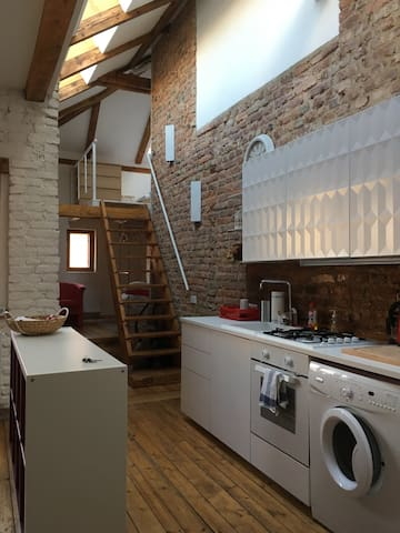 Spacious and bright romantic attic apt in Vysehrad - Praga - Loft