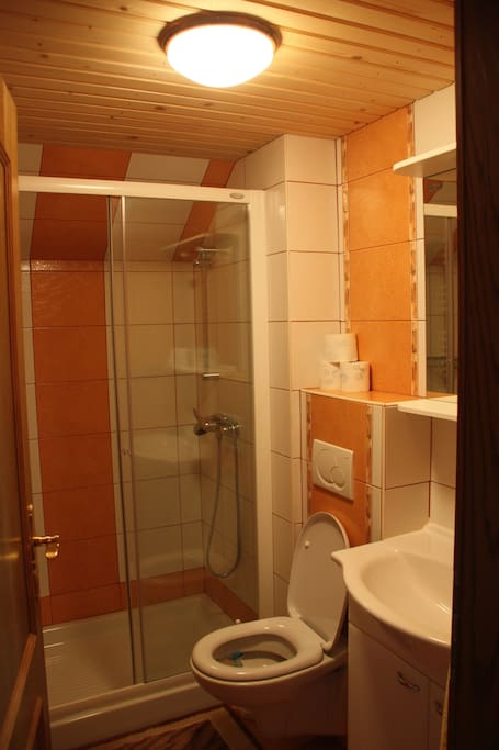 New bathroom with big shower cabine