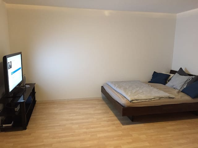 1-room Appt with bathroom, TV, Wlan - Nottwil - Appartement