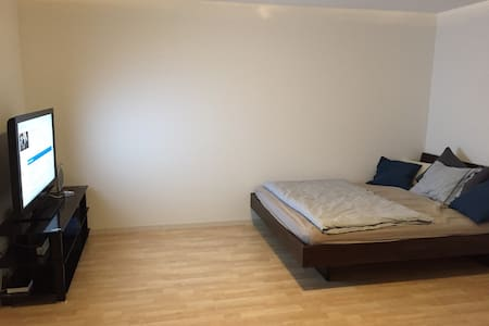 1-room Appt with bathroom, TV, Wlan - Nottwil - 公寓