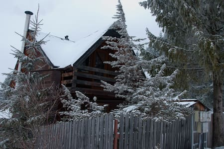 Cozy Wood Cabin in Carpathians