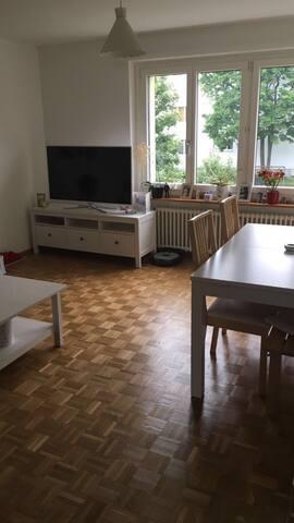 Sunny 3-room apartment - Muttenz - Leilighet