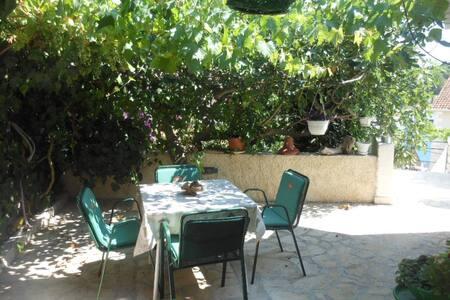 Milna Brac Fig apartment - Milna