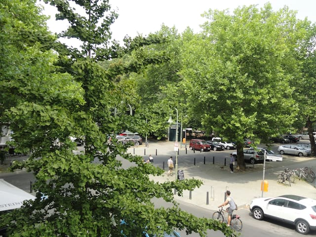 Great Apt. at Kollwitzplatz, Sublet - Berlín - Pis