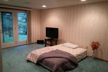 Beautiful and Spacious Single bedroom available - 뉴잉턴(Newington)