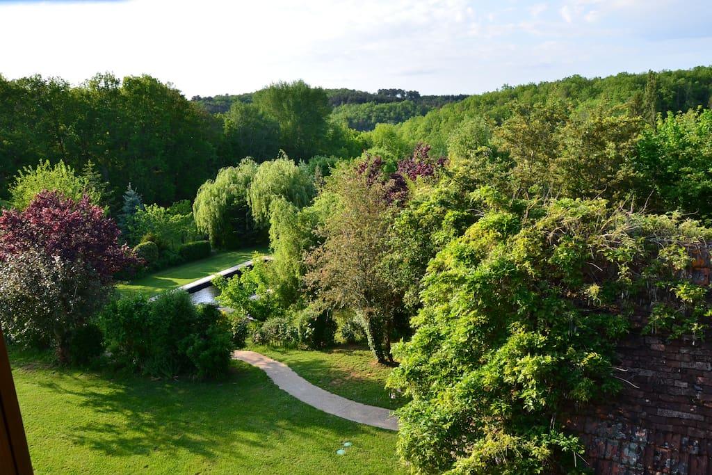 Blick in den Garten (Wege sind Rollifreundlich; Waschbeton)